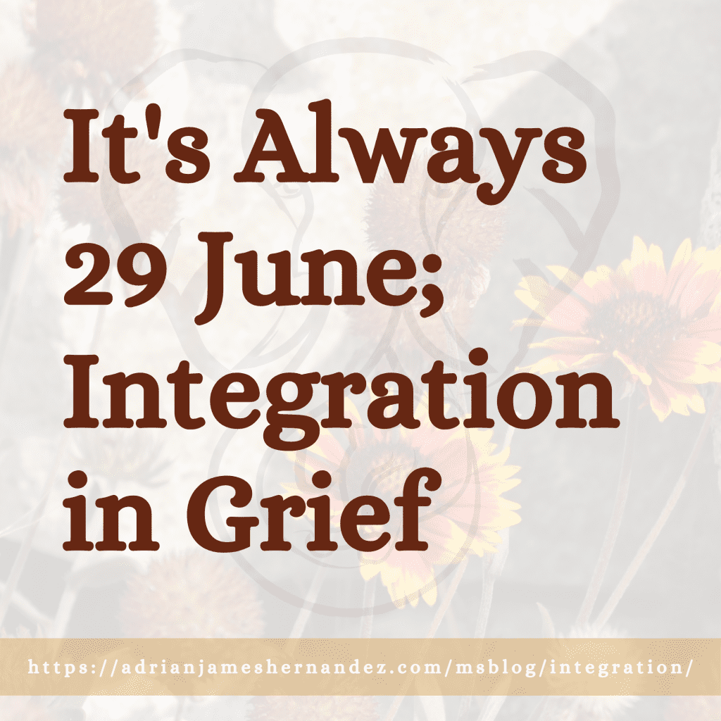 It's Always 29 June; Integration in Grief (Miranda's Blog) | Overlaid on image of wildflowers in Lake Tahoe (Miranda Hernandez)