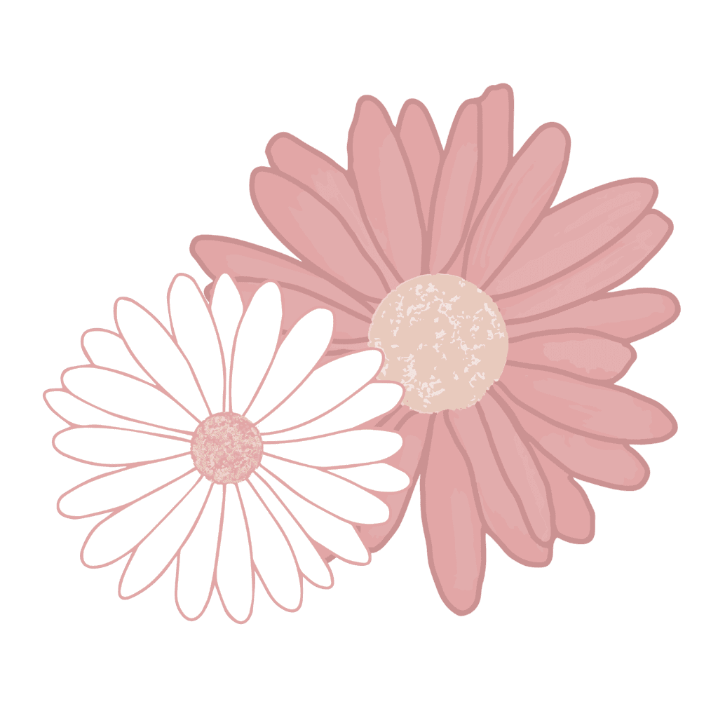 Plain Talk Pregnancy icon: one small white daisy nestled into a larger pink daisy